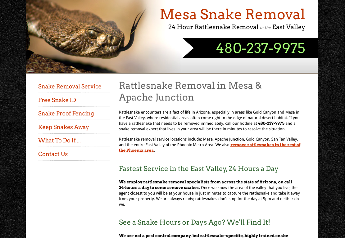 snake removal in the east valley  u00ab phoenix snake removal
